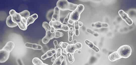 Microbial DNA isolation for particularly difficult strains